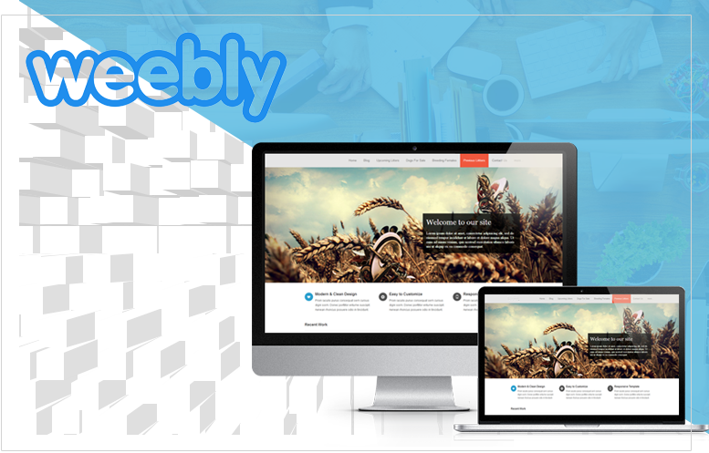 Hire Weebly Designers and Developers from CyberNext